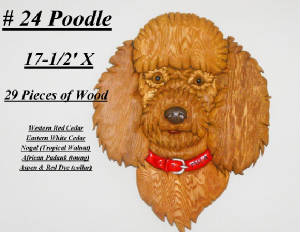 Dogs/Poodle-2.jpg